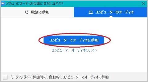 1_zoom_5audio.jpg