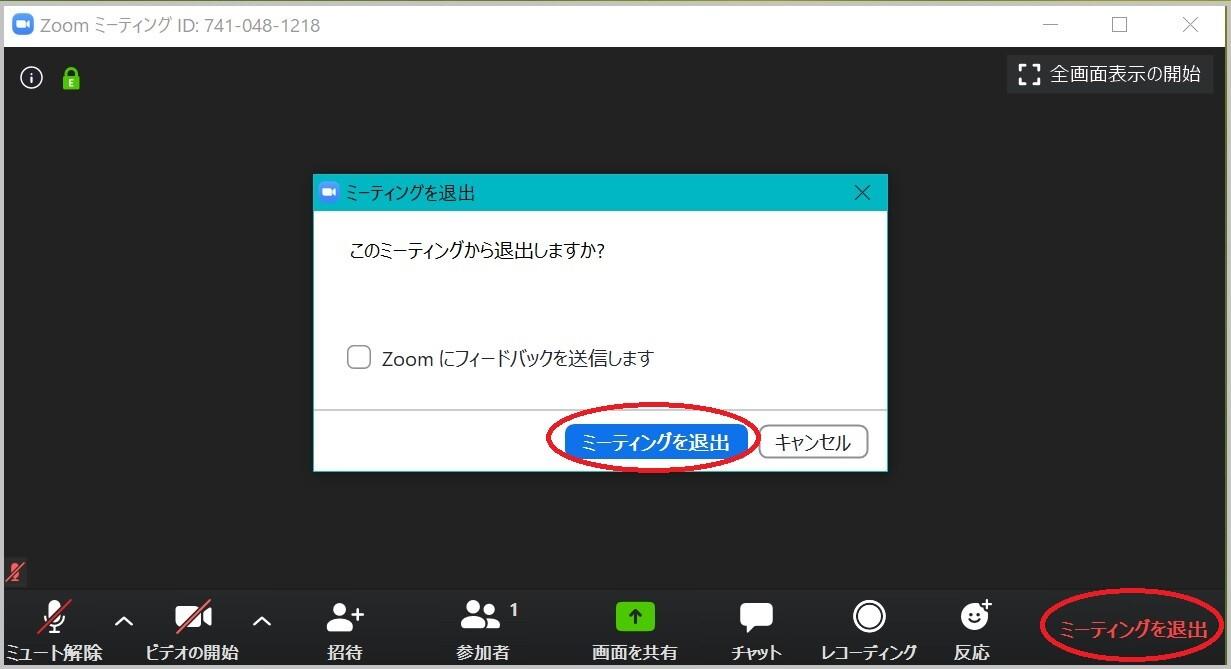 6_zoom_exit.jpg